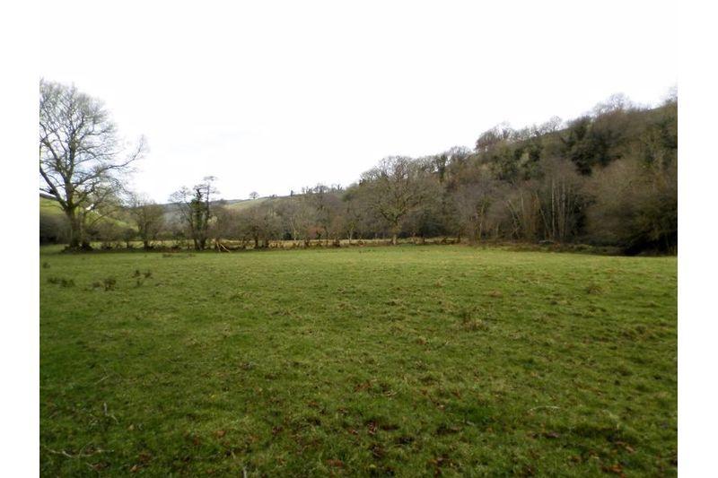 View Towards Woodland