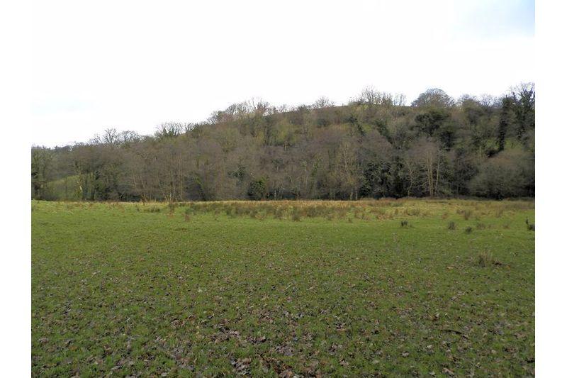 Paddock 3 towards River