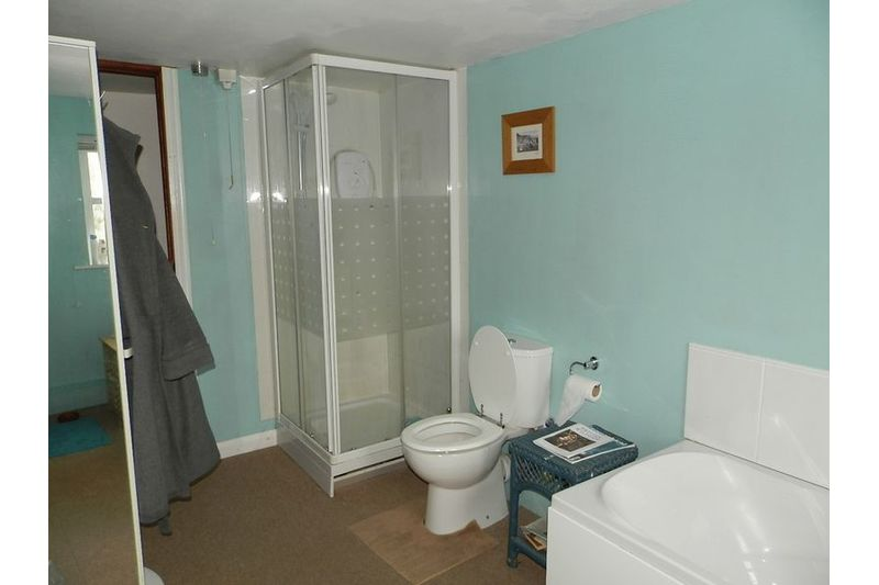 Family Bathroom - Another View