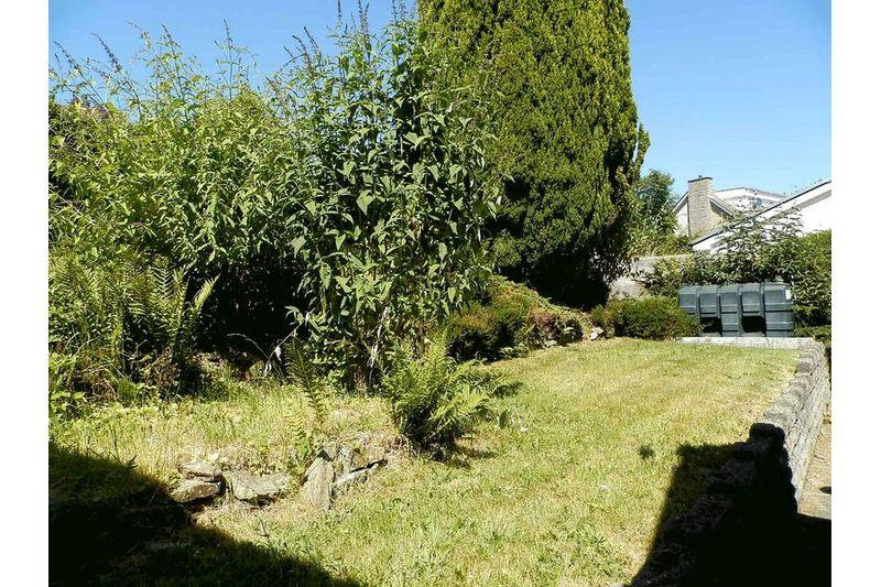 More Rear Gardens