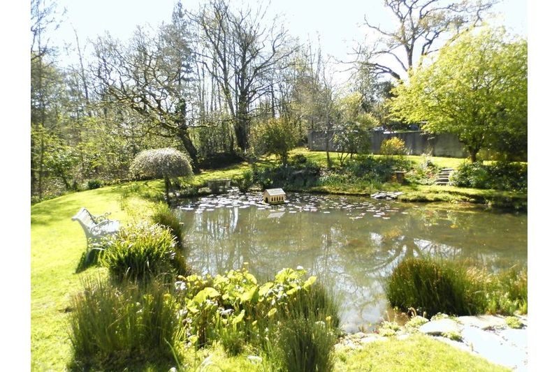 Natural Pond Area