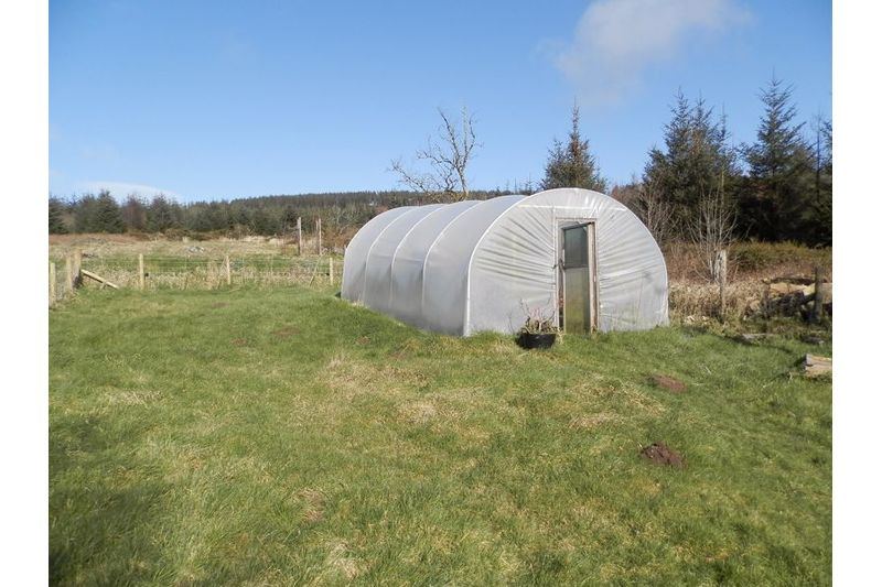 Gardens And Polytunnel