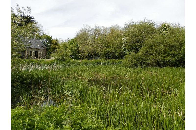Small Pond and House