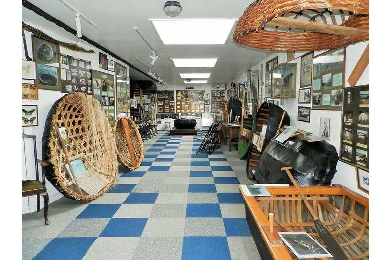 Museum Area