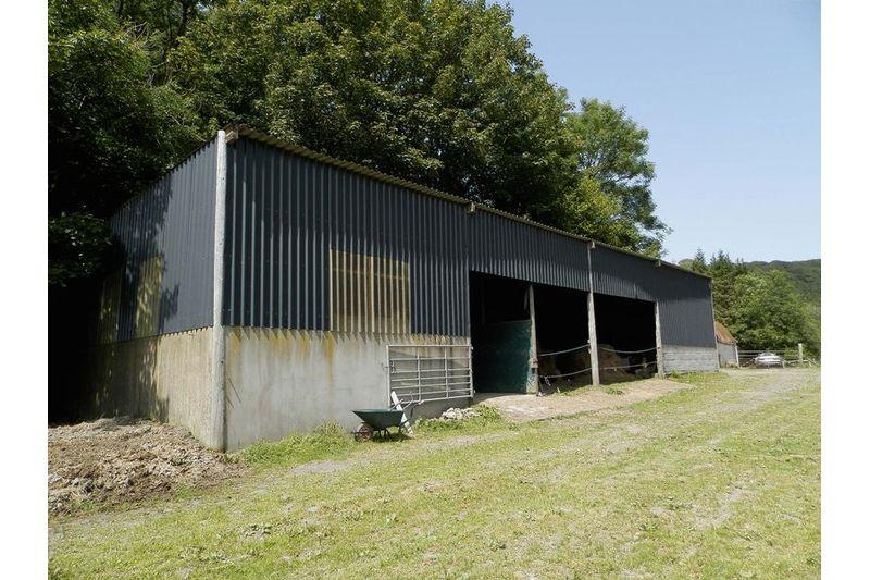 Stabling & Barn