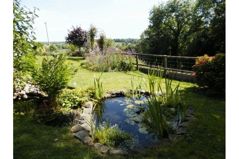 Pond And Lawns