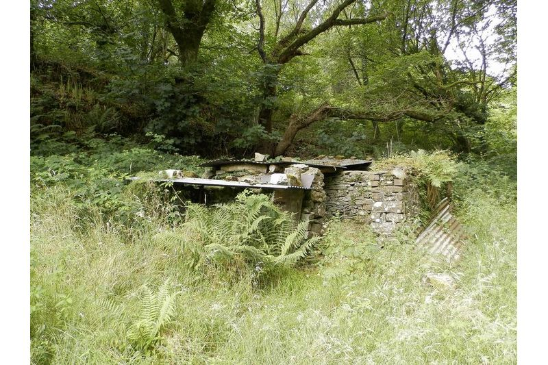 Ruin Behind House
