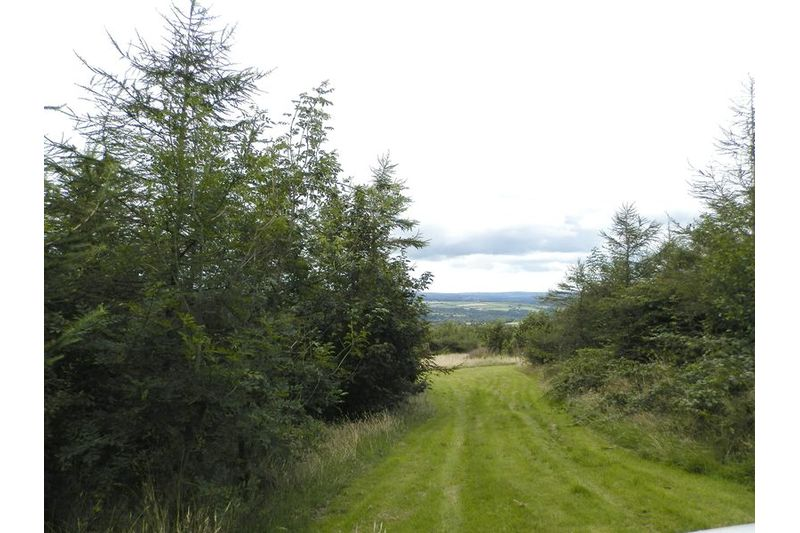 Another View of Land