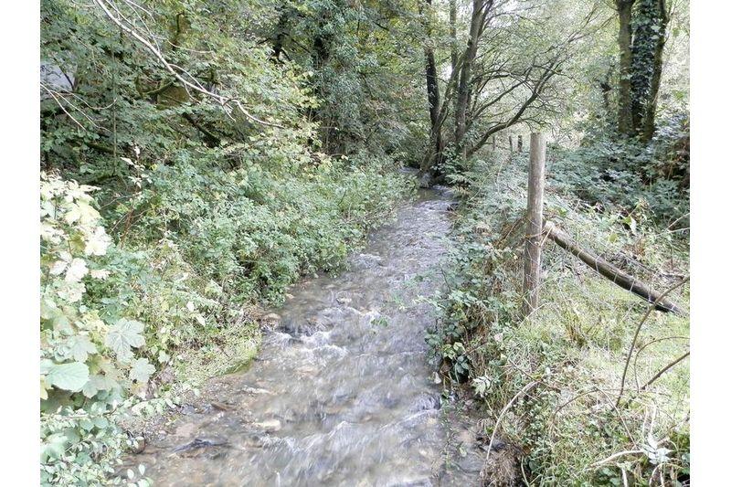 Tributuary Into The River Duad
