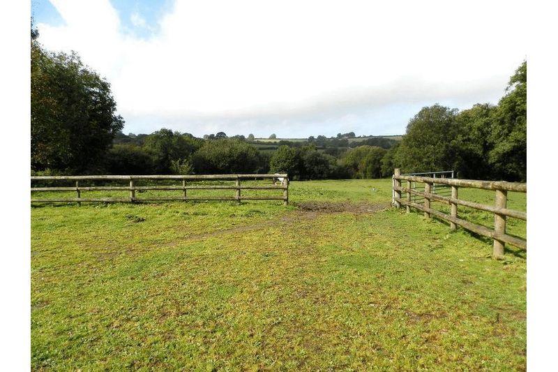 Yard, Paddock and Views