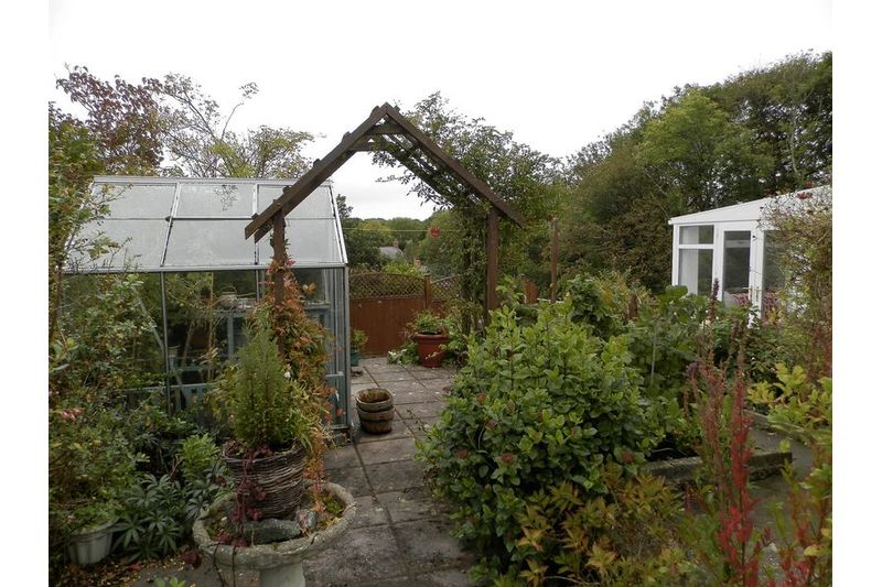 Greenhouse And Patio