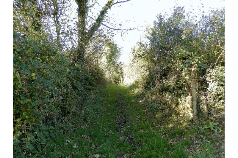Direct Access To Bridlepath