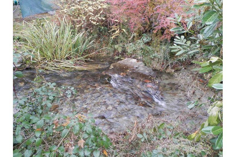 River At Garden Boundary