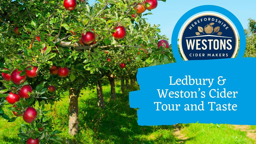 Ledbury & Weston's Cider Tour and Taste