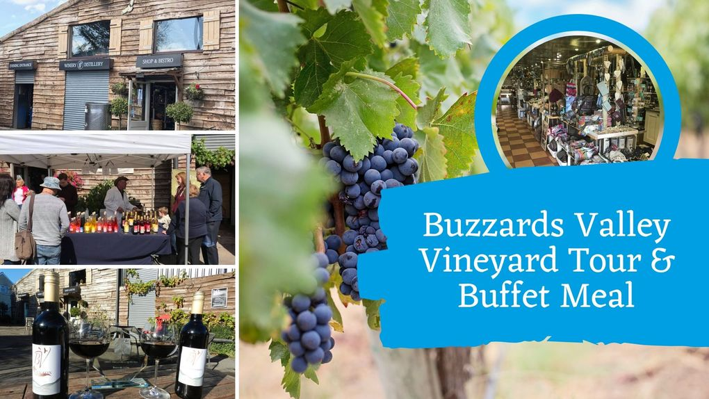 Buzzards Valley Vineyard Tour & Buffet Meal